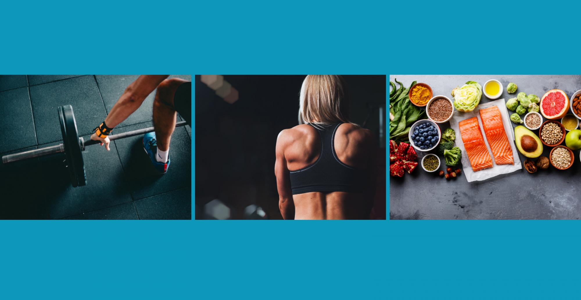 SL8 Fitness & Nutrition